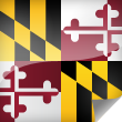 Image Maryland Flag Icon